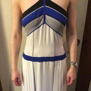 Beautiful BCBG Runway dress